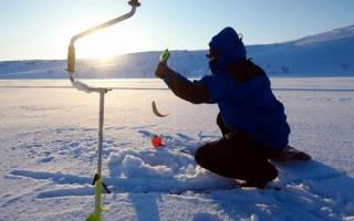 Буры для зимней рыбалки – различия, критерии выбора и лучшие модели