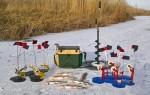 Зимняя рыбалка на жерлицы — особенности тактики и техники