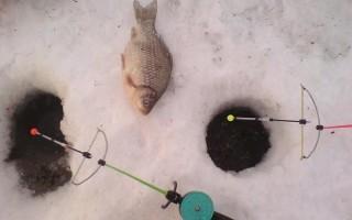 Кивок арбалет для зимней рыбалки – изготовление своими руками, настройка и техника ловли