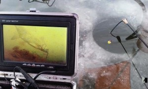 Зимние камеры для подледной рыбалки – применение и устройство