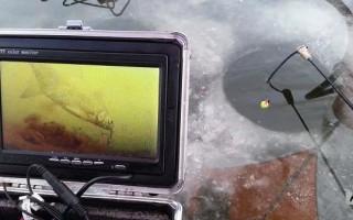 Зимние камеры для подледной рыбалки — применение и устройство