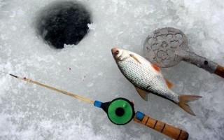 Ловля плотвы зимой на течении