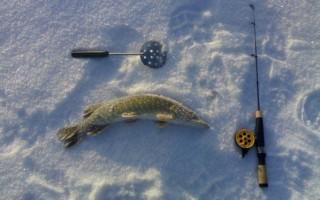 Ловля щуки в феврале – поиск, тактика и техника