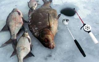 Зимние снасти на леща – ловля поплавочными и кивковыми удочками