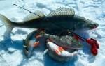 При каком давлении лучше клюет рыба зимой – реальность и вымысел