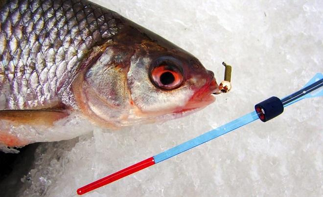 Уловистые вольфрамовые и свинцовые мормышки для зимней рыбалки с мотылем и безмотылки