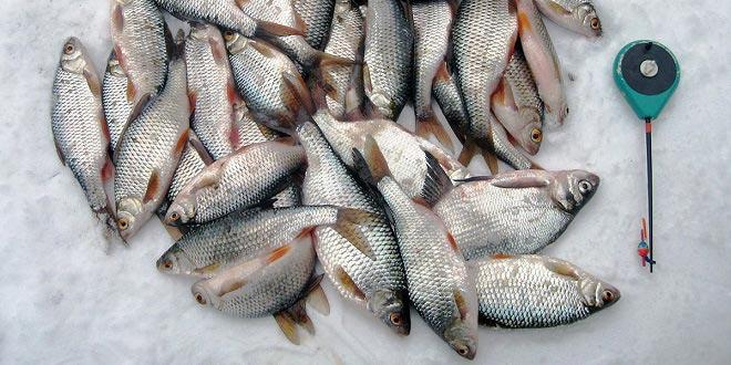 Как оснастить удочку для зимней рыбалки