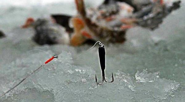 Ловля на чертики зимой - выбор приманки и техника поимки