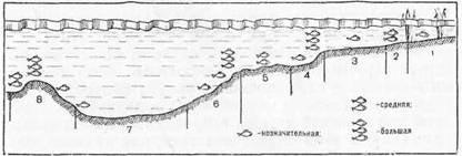 схема стоянок