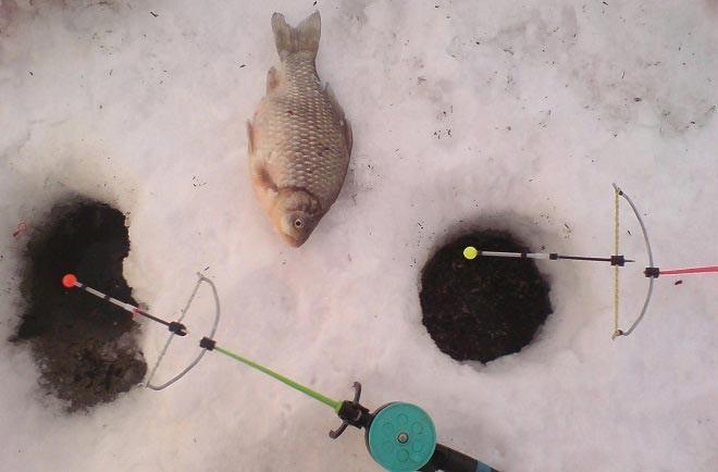 Арбалет для рыбалки