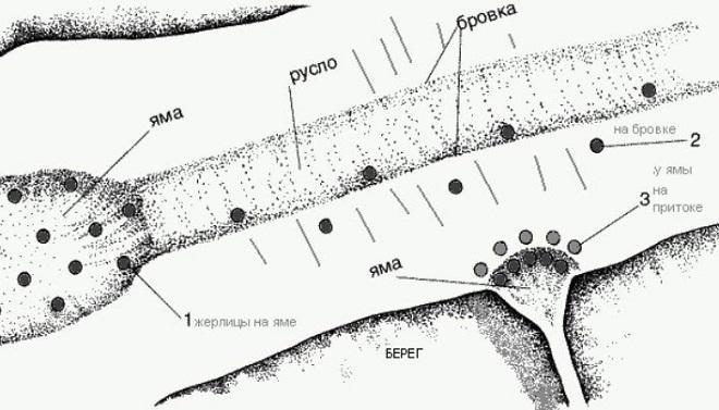 Схема установки жерлиц в реках в перволедье